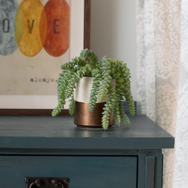 Faux donkey tail succulent in ceramic bronze and cream planter on nightstand