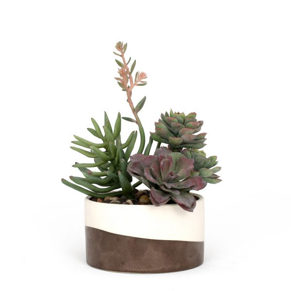Faux succulent arrangement in cream and bronze low planter on white background