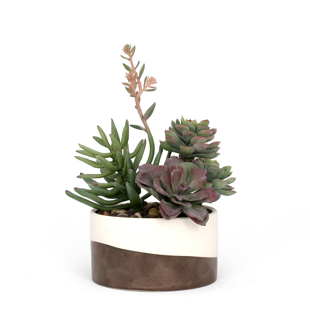 Faux Succulent Arrangement The Blumerie Ultra Realistic Modern Artificial Flowers