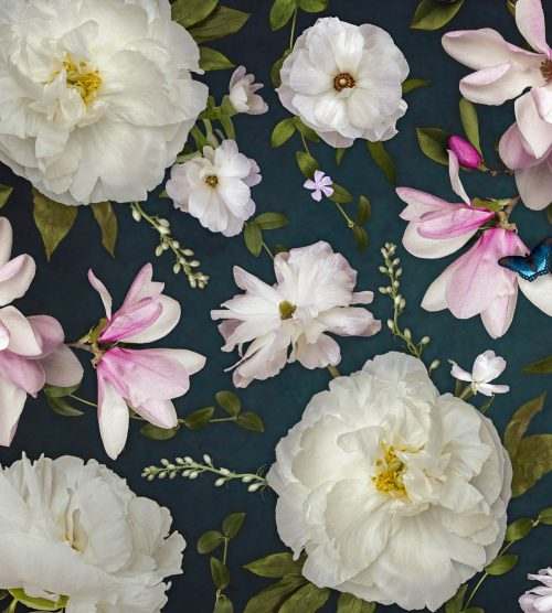 Oversized Floral Wallpapers